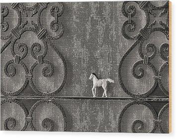 Silver Nostalgia Wood Print by Jeff  Gettis