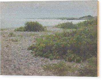 Silver Shoreline Westport Ma Wood Print