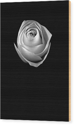 Wood Print featuring the photograph Simple Elegance by Elsa Marie Santoro