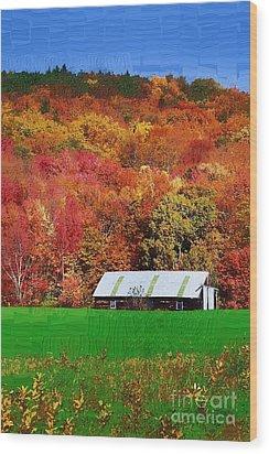 Simply Adirondack Wood Print by Diane E Berry