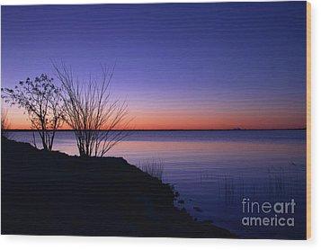 Simply Gentle Blue Wood Print