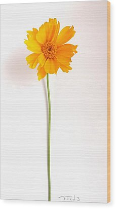 Simply Sunny Wood Print