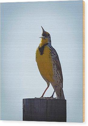 Sing Me A Song Wood Print by Ernie Echols
