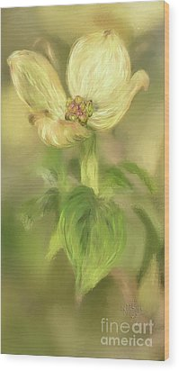 Wood Print featuring the digital art Single Dogwood Blossom In Evening Light by Lois Bryan