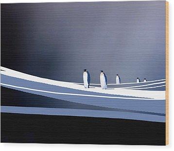 Single File Wood Print by Paul Sachtleben