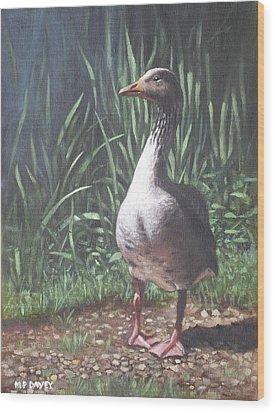 Single Goose Wood Print by Martin Davey