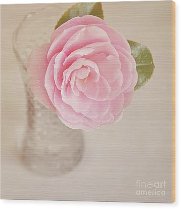 Wood Print featuring the photograph Single Pink Camelia Flower In Clear Vase by Lyn Randle