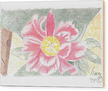 Single Pink Peone - 2 Wood Print by Rod Ismay