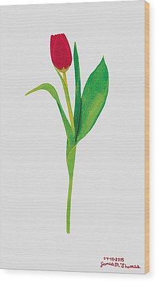 Single Red Tulip Wood Print by James M Thomas