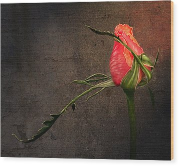 Single Rose Wood Print by Ann Lauwers