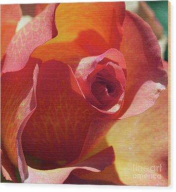 Single Rose Wood Print by Gwyn Newcombe