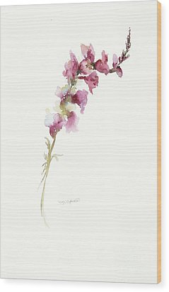 Single Stem Snapdragon Wood Print by Sandra Strohschein