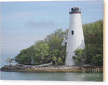 Sister Island Lighthouse Wood Print by The Art of Alice Terrill