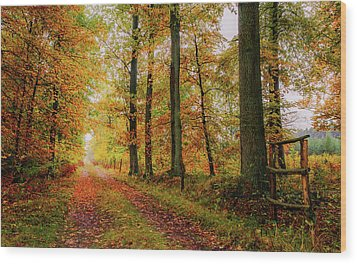 Wood Print featuring the photograph Site 6 by Dmytro Korol