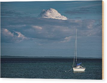 Wood Print featuring the photograph Sittin By The Bay by Onyonet  Photo Studios