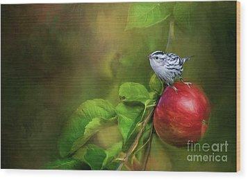 Sitting On An Apple Wood Print by Eva Lechner