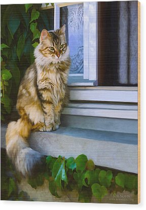 Sitting Pretty Wood Print by Bob Nolin