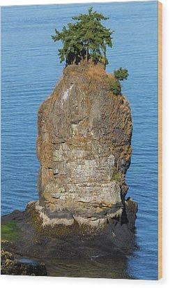 Siwash Rock By Stanley Park Wood Print by David Gn
