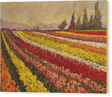 Wood Print featuring the painting Skagit Valley Tulip Field by Charles Munn