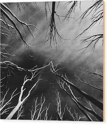 Skeleton Trees  Wood Print