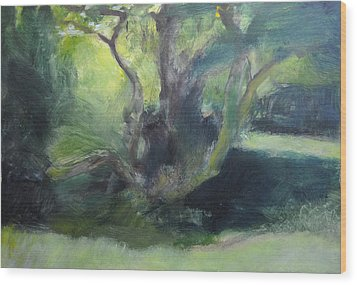 Sketch Of A Shady Glade. Wood Print by Harry Robertson