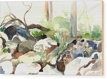 Skipping Rocks Wood Print by Linda Berkowitz