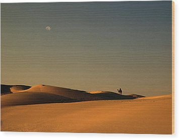 Skn 1117 Camel Ride At 6 Wood Print