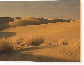Skn 1124 The Desert Landscape Wood Print by Sunil Kapadia
