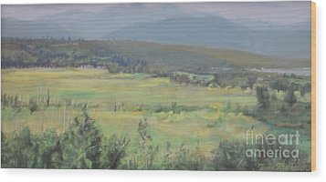 Skokomish Valley Wood Print by Terri Thompson