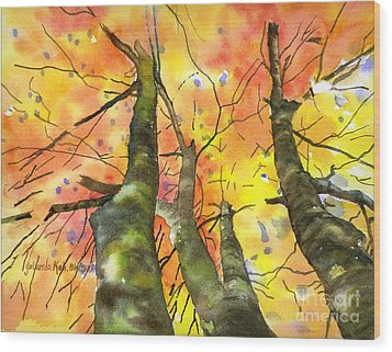 Sky View Wood Print