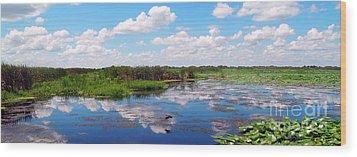 Skyscape Reflections Blue Cypress Marsh Near Vero Beach Florida C5 Wood Print