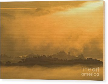 Wood Print featuring the photograph sland in the Mist - D009994 by Daniel Dempster