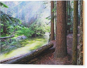 Slanting Sunlight On River Wood Print