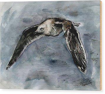 Slaty-backed Gull Wood Print