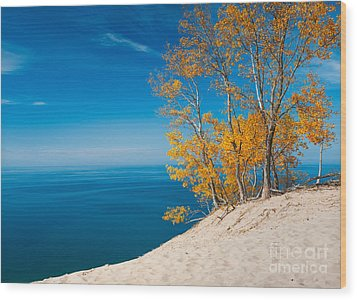 Sleeping Bear Dunes Vista 002 Wood Print