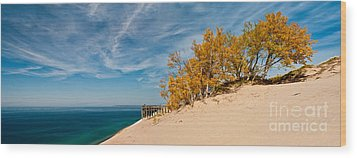 Sleeping Bear Overlook Wood Print
