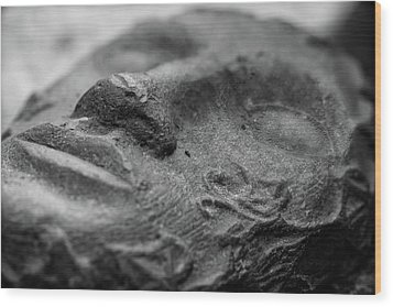 Wood Print featuring the photograph Sleeping by Clare Bambers