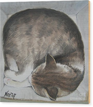 Sleeping Kitty Wood Print by Jindra Noewi
