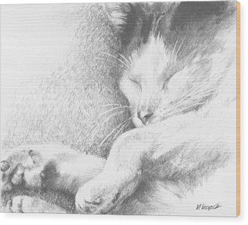 Sleeping Sadie Wood Print by Meagan  Visser