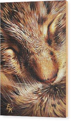 Sleeping Tabby Wood Print by Elena Kolotusha