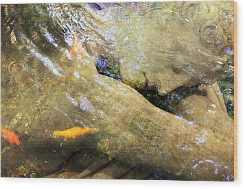Sleeping Under The Water Wood Print by Munir Alawi