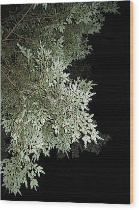 Sleepless Night Wood Print by Lali Partsvania