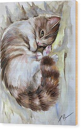 Sleepy Cat 2 Wood Print