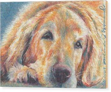 Sleepy Dog Wood Print by Melissa J Szymanski