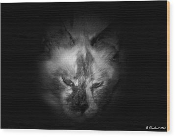 Wood Print featuring the photograph Sleepy Head by Betty Northcutt