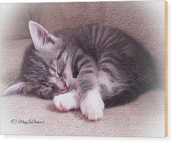 Sleepy Kitten Bymaryleeparker Wood Print