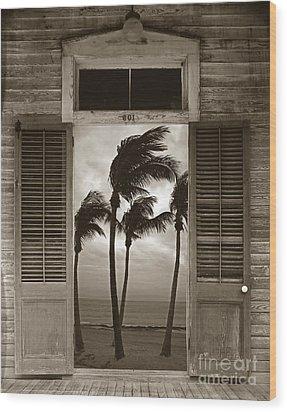 Slip Away To Paradise Wood Print by John Stephens