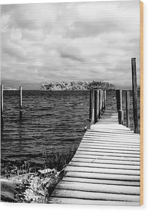 Slippery Dock Wood Print