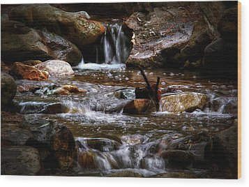 Small Falls Wood Print by Elaine Malott