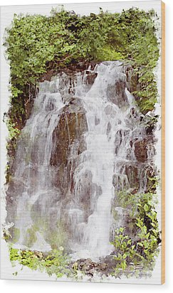 Small Falls On Mt. Ranier Wood Print by Peter J Sucy